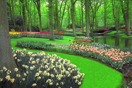 شم النسيم Creek_and_flowers_hz