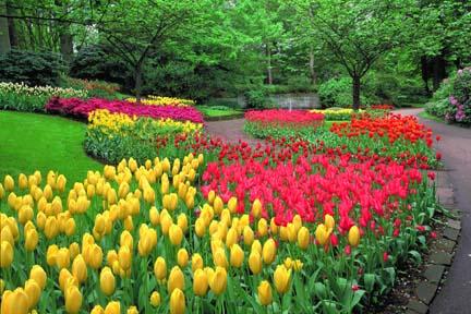 شم النسيم Fountains_and_flowers_hz